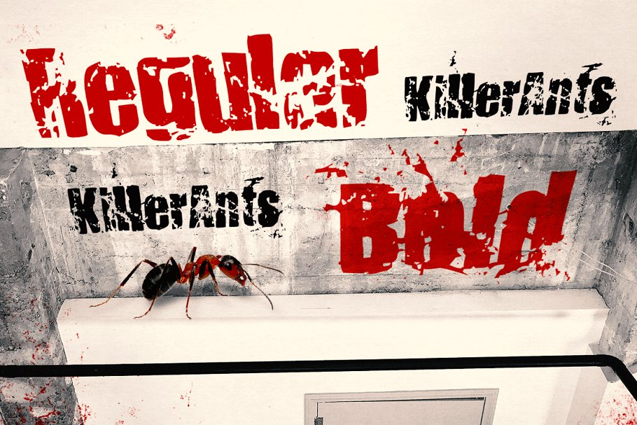 8.-KillerAnts