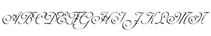 Adine Kirnberg Alternate  What Font is