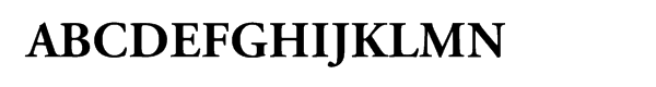 Adobe Garamond™ Pro Bold Font UPPERCASE