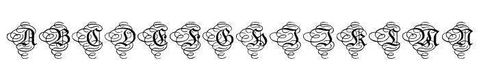 Aristokrat Zierbuchstaben  What Font is