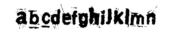 Awaken Font LOWERCASE