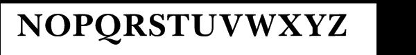 Baskerville Cyrillic Bold Font UPPERCASE