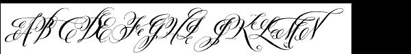 Belluccia Contextual Bold  What Font is