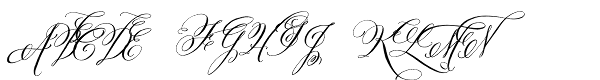 Belluccia Stylistic  What Font is