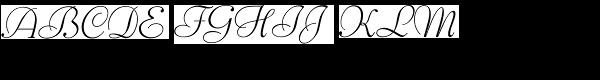Bernhard Script Light  What Font is