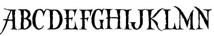 Captain Kidd Demo  What Font is