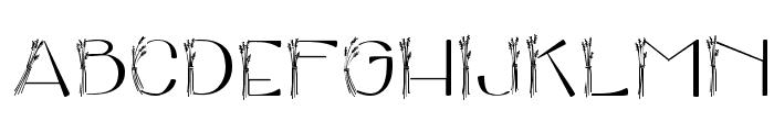 broderbund clickart fonts v5 2009