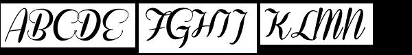 Coneria Script Fat  What Font is