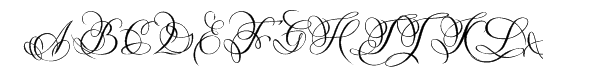 Diana Cyrillic Regular  What Font is