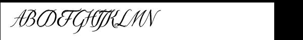 Donna Bodoni Script B  What Font is