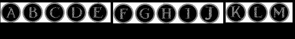 Gans Antigua Decorative4  What Font is