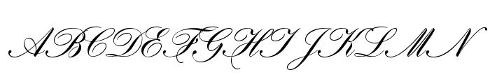 HistoricScriptOpti  What Font is