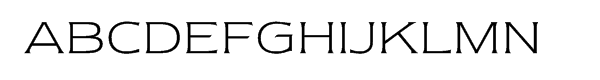 ITC Newtext® Light  What Font is