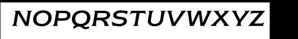 ITC Newtext® Regular Italic Font UPPERCASE
