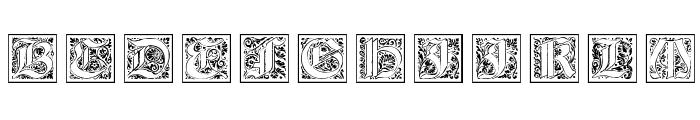 KaiserRotbartTwoCaps  What Font is