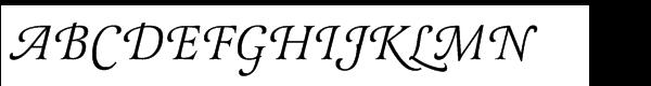 Latienne Std Swash Alternative Regular Italic  What Font is