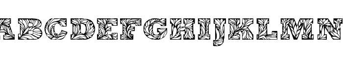 Leaffy  What Font is