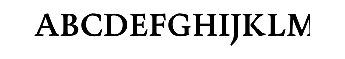 Maiola Bold Cyrillic OT  What Font is