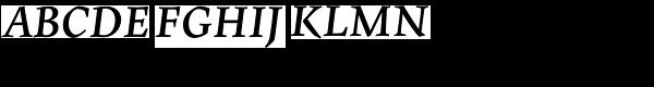 Maiola PE Bold Italic  What Font is