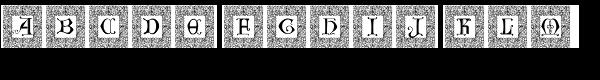 Manuscript XIVCentury Frame2  What Font is