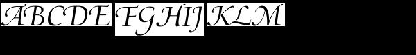 Medici Script LTStd  What Font is