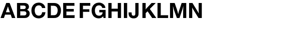 Nimbus Sans Novus Bold  What Font is