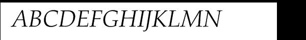 Palatino™ Light Italic  What Font is