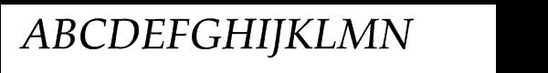 Palatino™ Medium Italic  What Font is