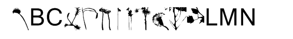 Picture Yourself™ Malicious Gardens Portrait  What Font is