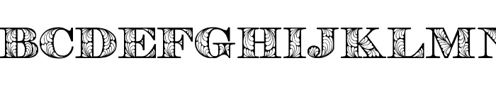 Retrograph  What Font is