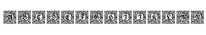 Schmuck-Initialen 1  What Font is