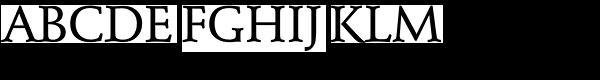 Schneidler Mediaeval DC D Medium  What Font is