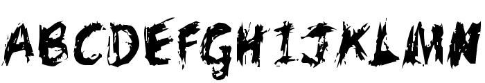 Scratchy  Large  What Font is