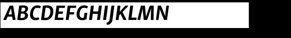 Skolar Sans PE Bold Italic  What Font is