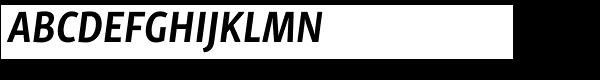 Skolar Sans PE Condensed Bold Italic  What Font is