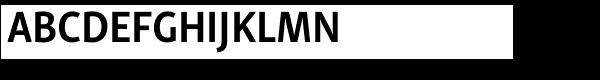 Skolar Sans PE Condensed Bold  What Font is