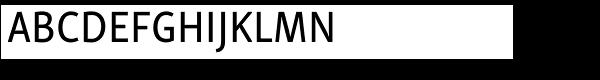 Skolar Sans PE Condensed Medium  What Font is