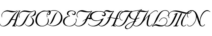 SNC Script Italic  What Font is