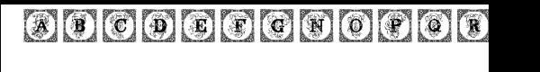 Surrey Caps  What Font is