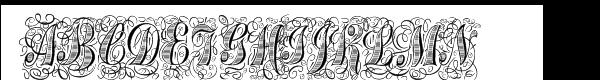 Treasury Flourish Platinum  What Font is