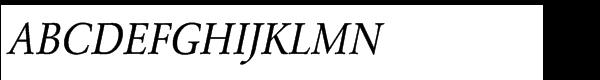URW Garamond Std Regular Extra Narrow Oblique  What Font is
