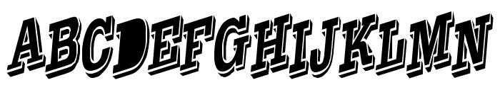 WesternSlant Regular  What Font is