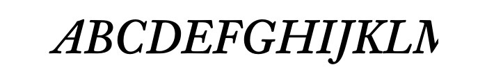 Williams Caslon Text Bold Italic OT  What Font is