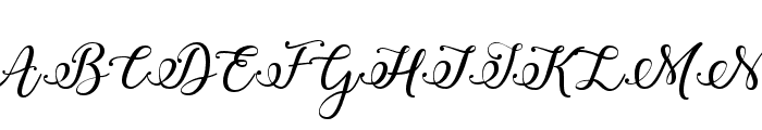 Winter Calligraphy  What Font is