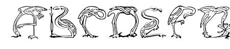 JF Flamingo Sample
