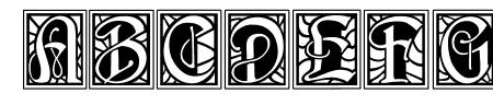 BD Renaissance Sample