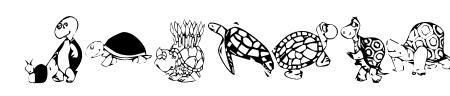 KR Turtles For Julie Sample