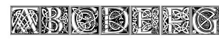 CelticEels Sample