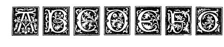 TypographerWoodcutInitialsOne Sample