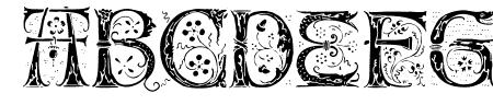Silvus Sample